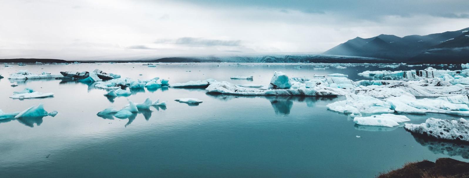Panel Discussion: Service design wrangles climate change