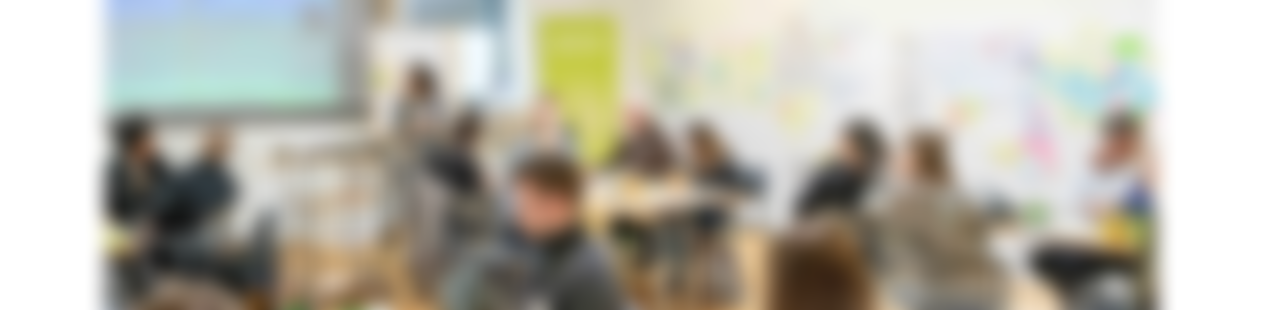 Launching the SDN Academy – ANew Initiative of the Service Design Network