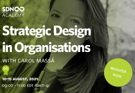 SDNA: Strategic Design in Organisations