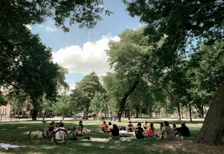 Weekend Hangout: Socially Distant Park Catchup & Discussion About SDN NYC Future